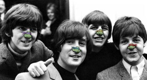 [meme] les tortues ninja nases