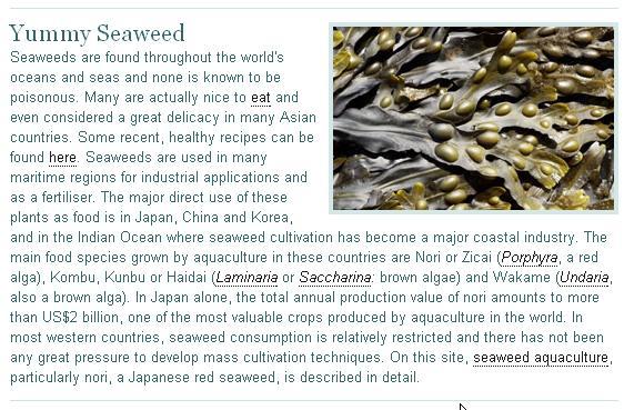 sea + weed = seaweed :-|